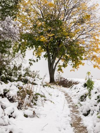 Weg durch die Kälte